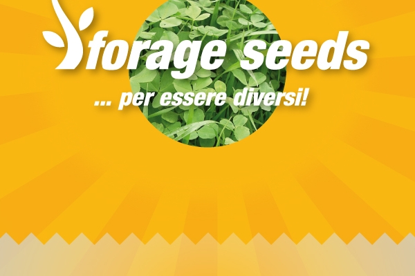 Forage Seeds